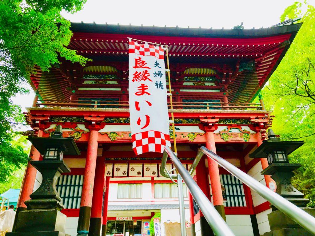 【北岡神社(熊本)御朱印】良縁まいりと夫婦楠のパワースポット