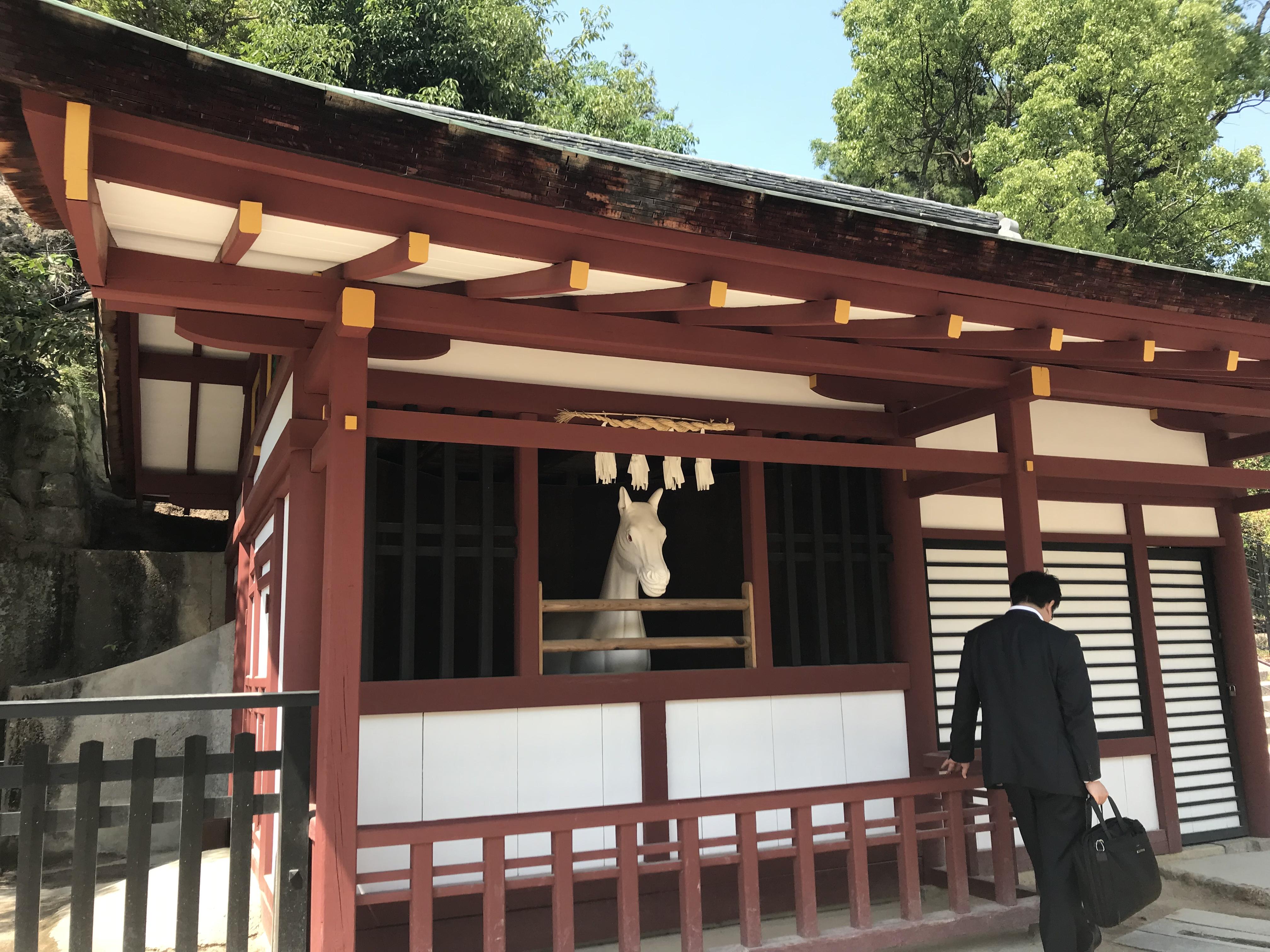 厳島神社を守る神馬