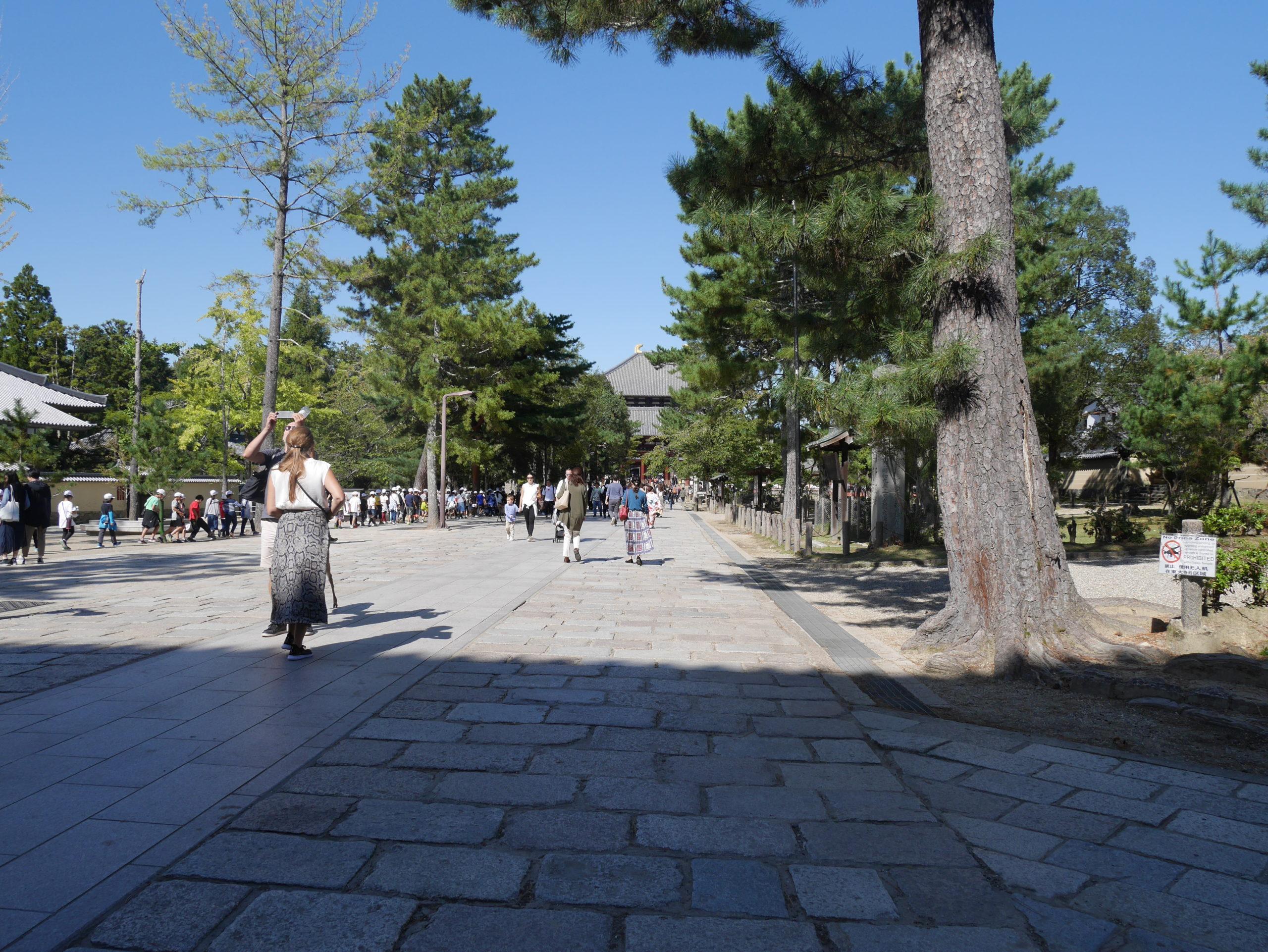 奈良へお出かけ!東大寺