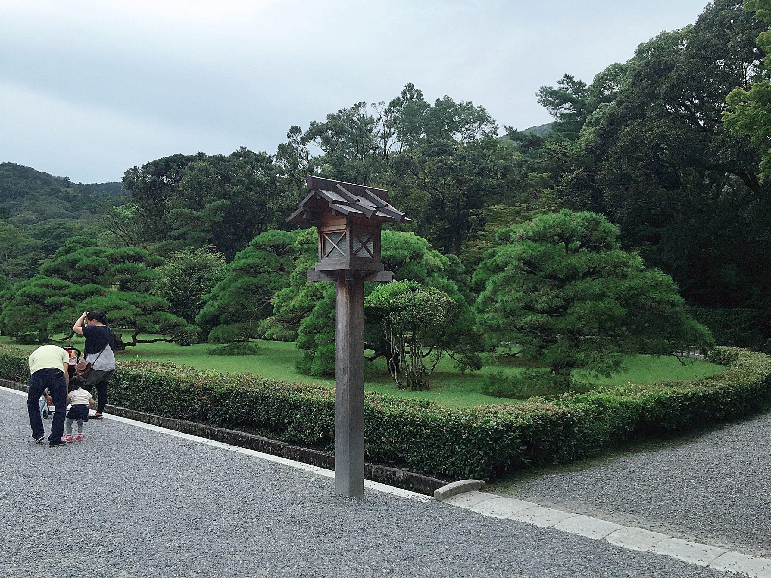 伊勢神宮内宮の松の木
