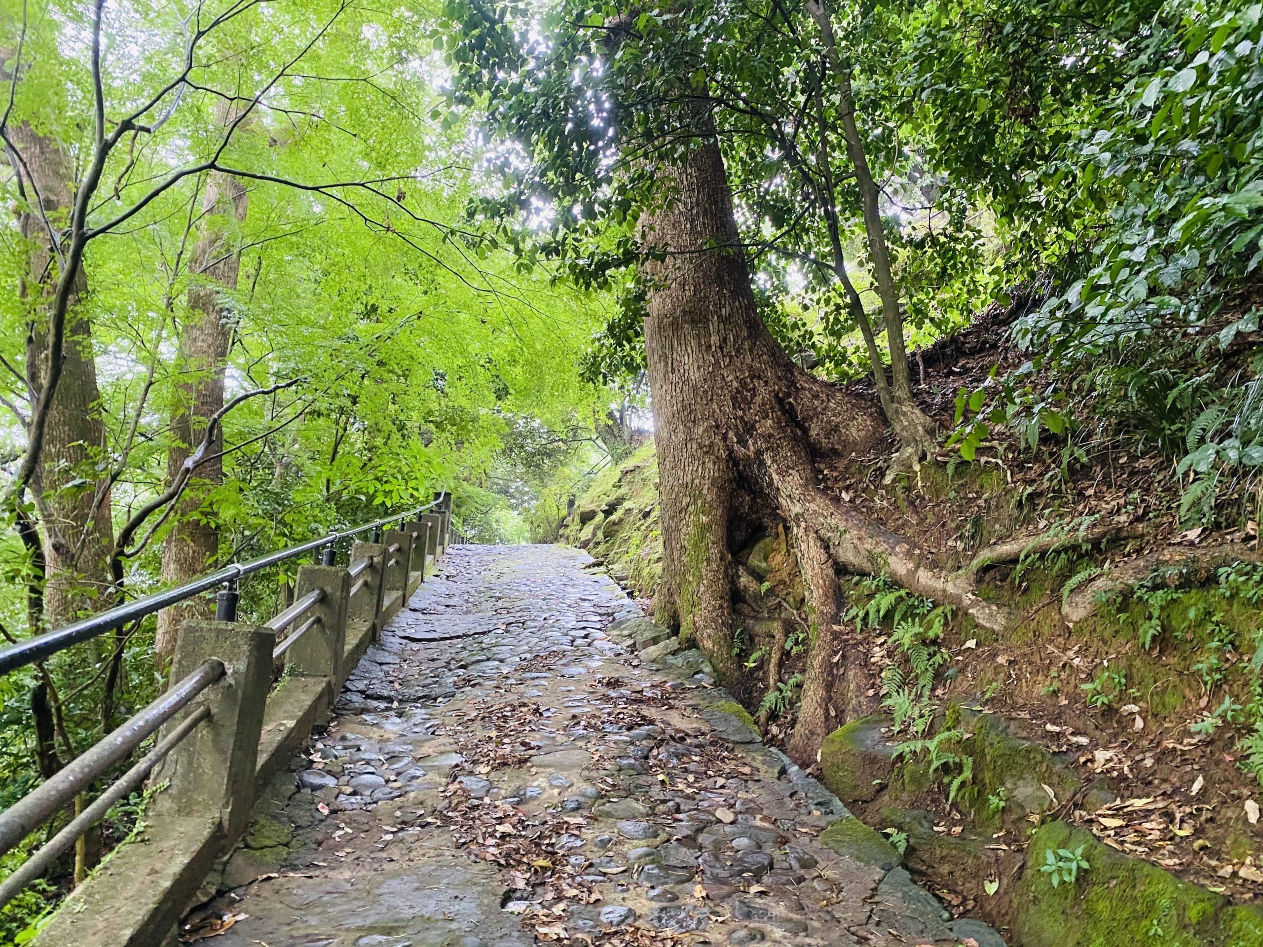 長崎自然のパワースポット