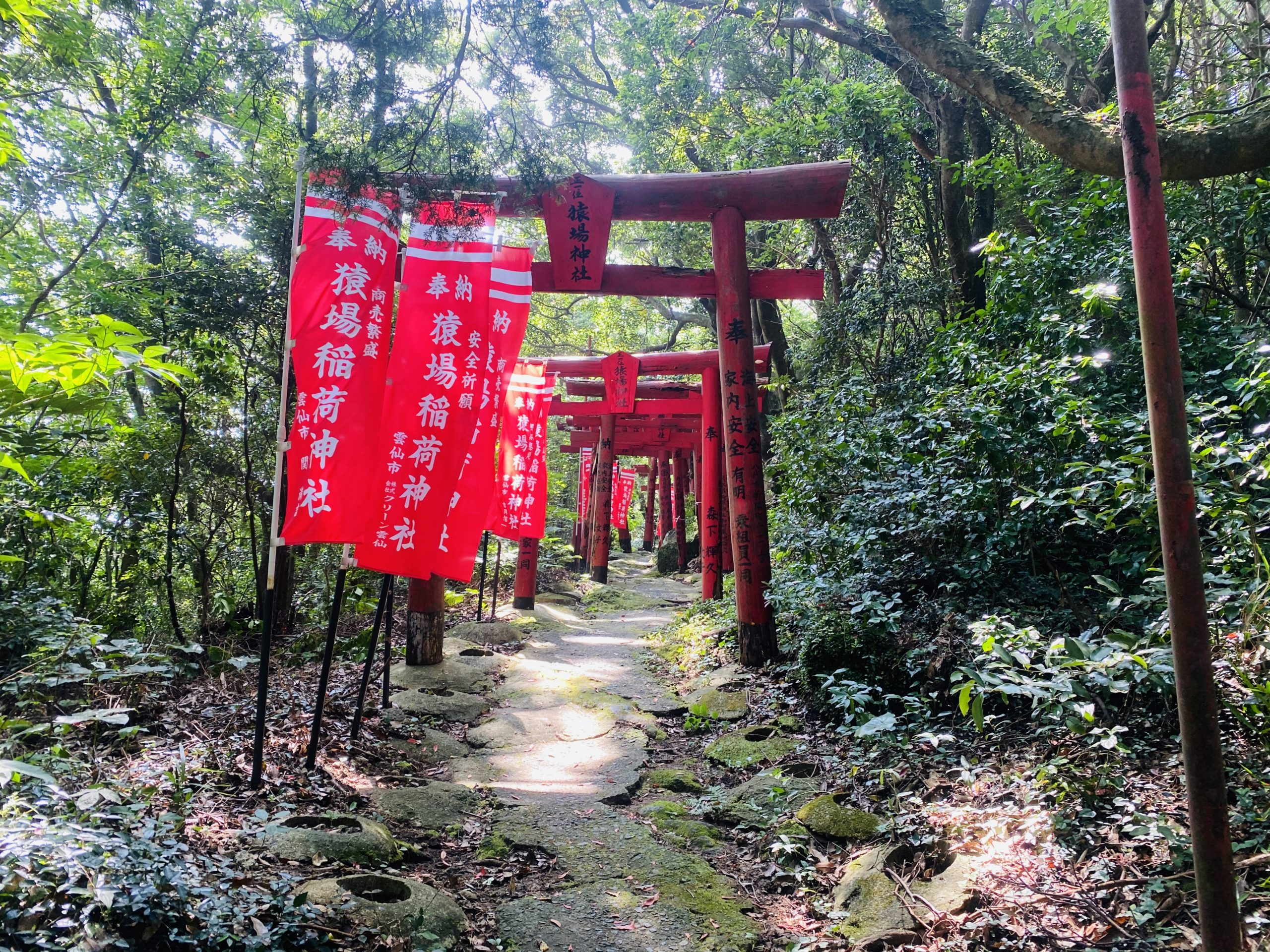 朱色の鳥居が立ち並ぶ神社