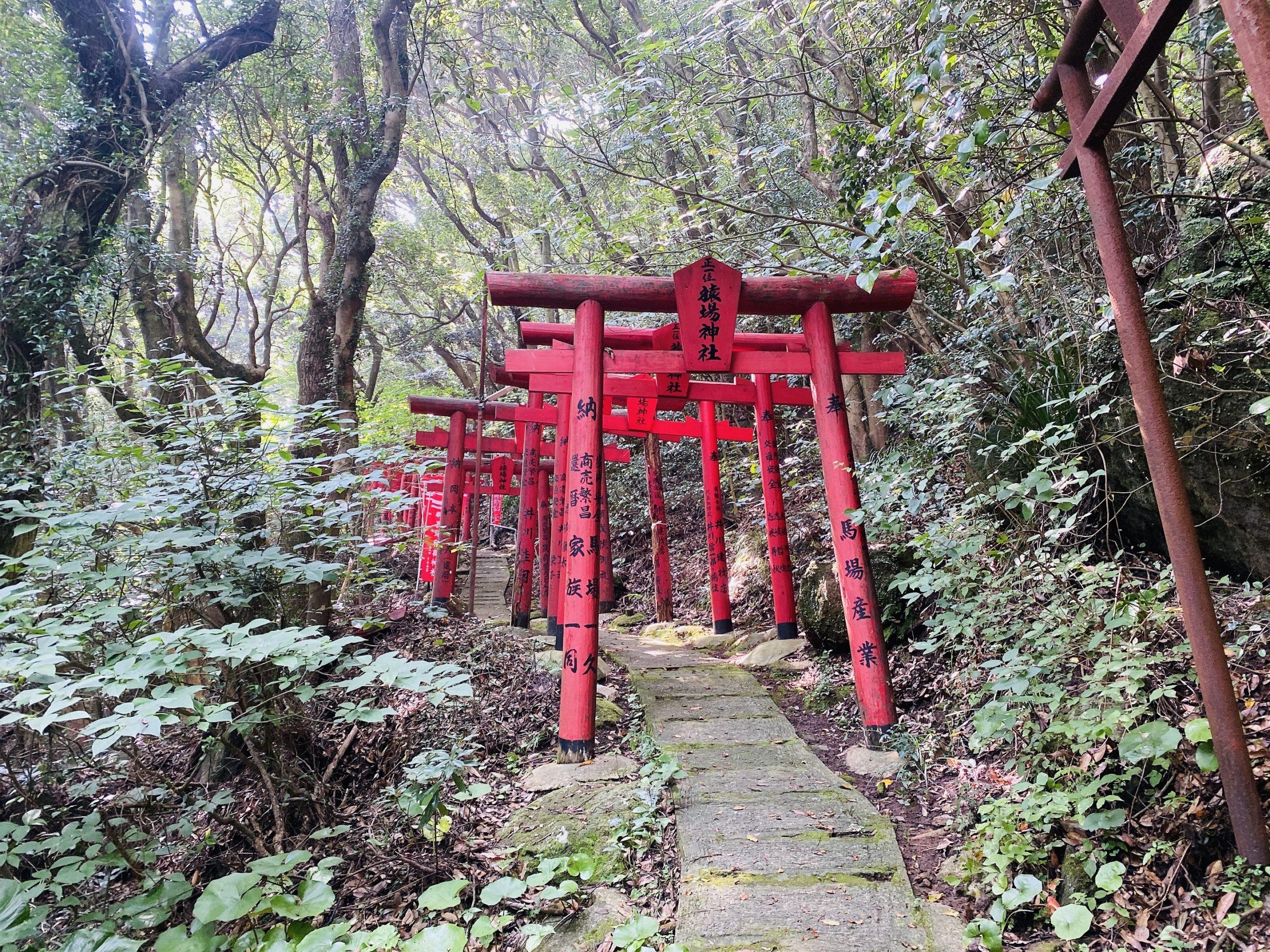 秘境に佇む神社