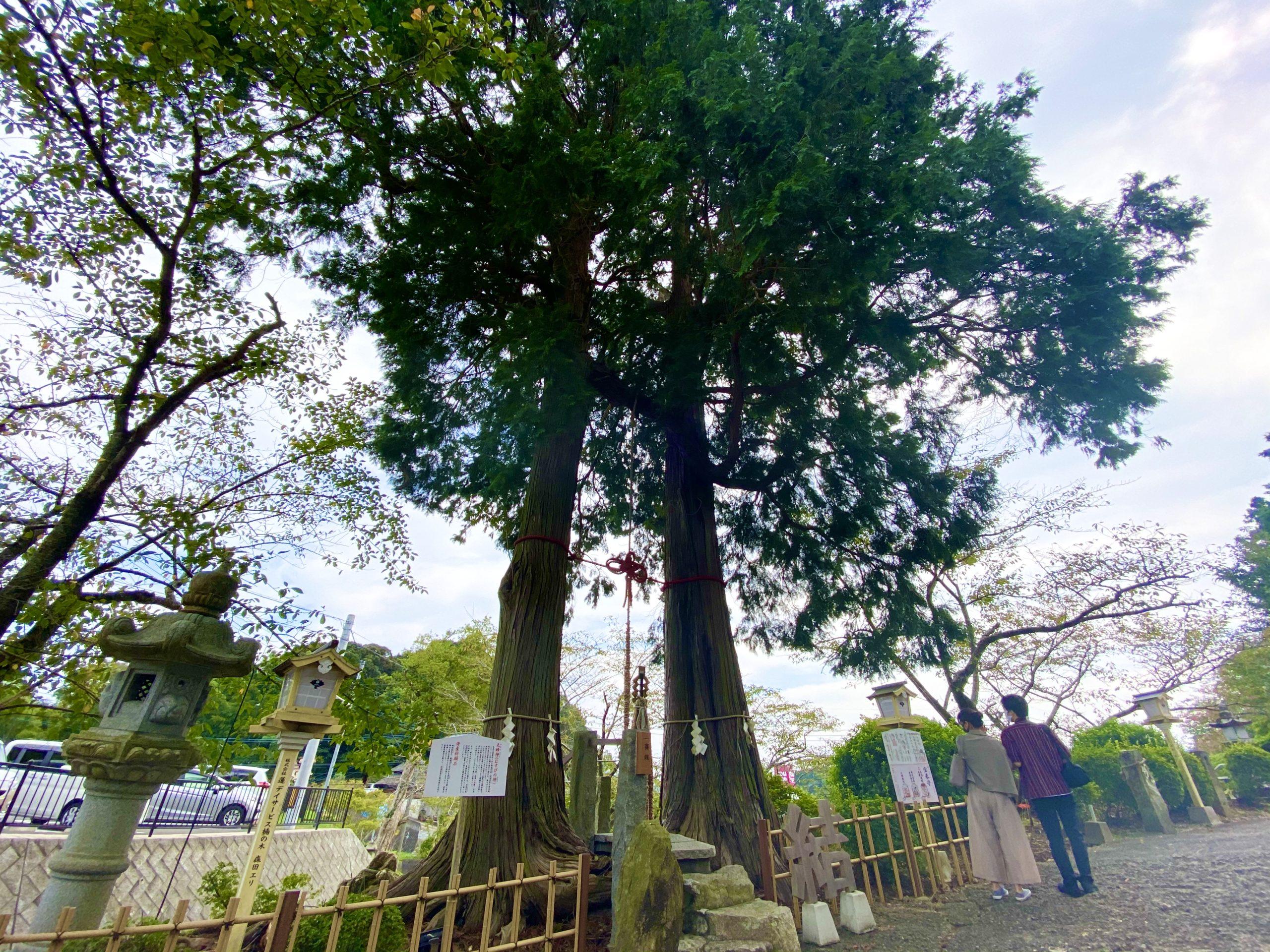 武雄神社の縁結びパワースポット
