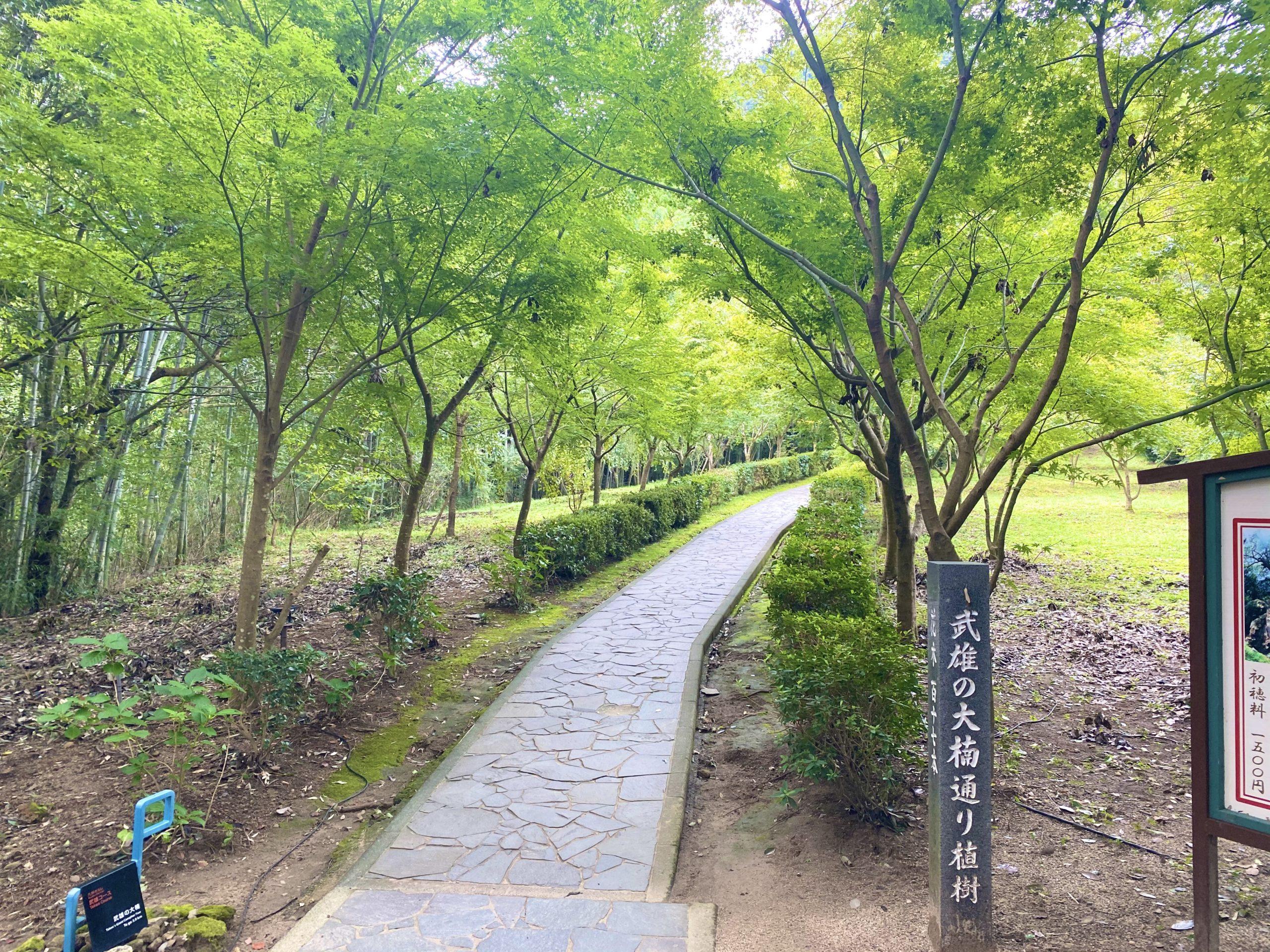 武雄神社の大楠へのアクセス
