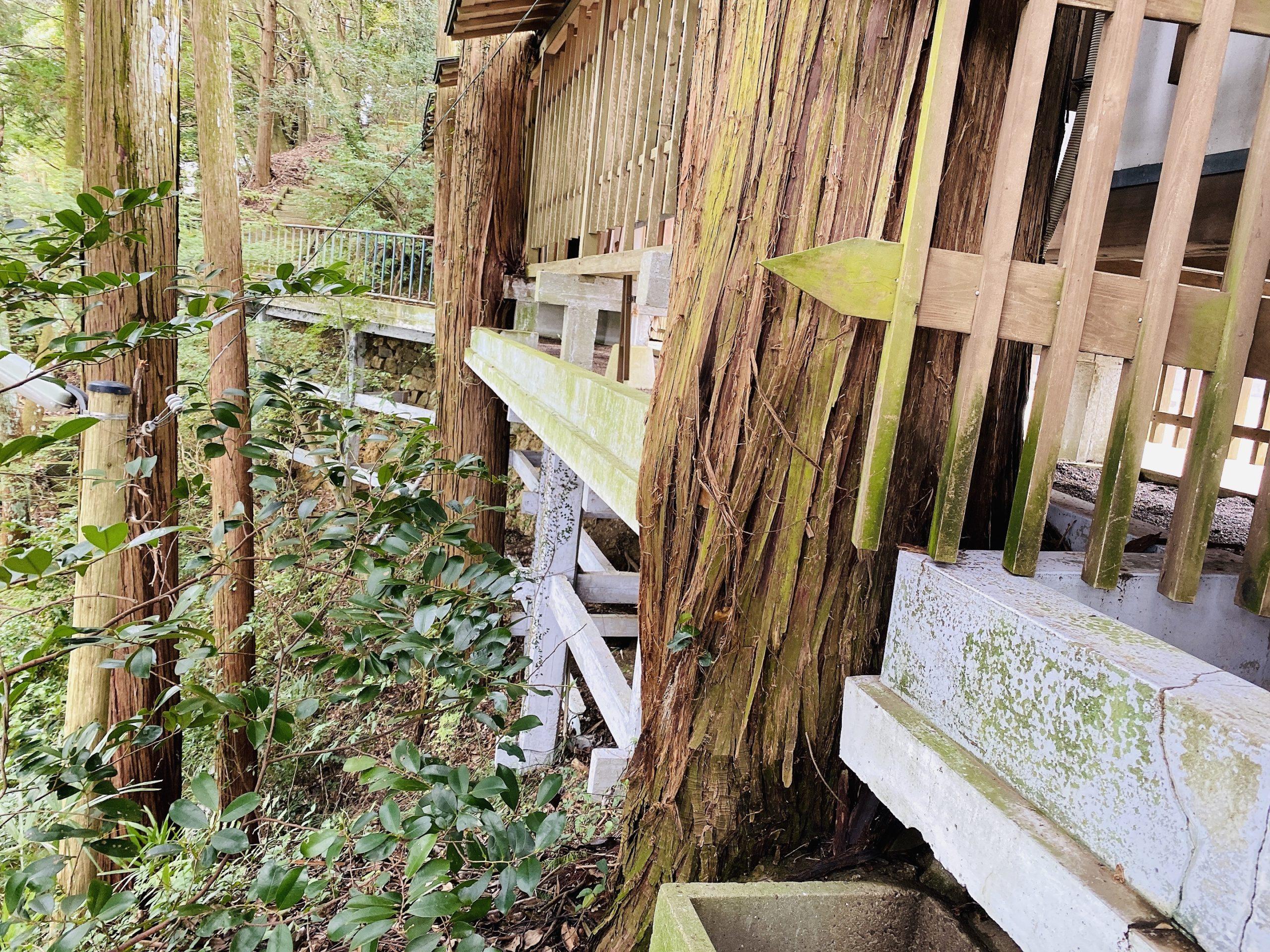 佐賀県で縁結び、開運祈願