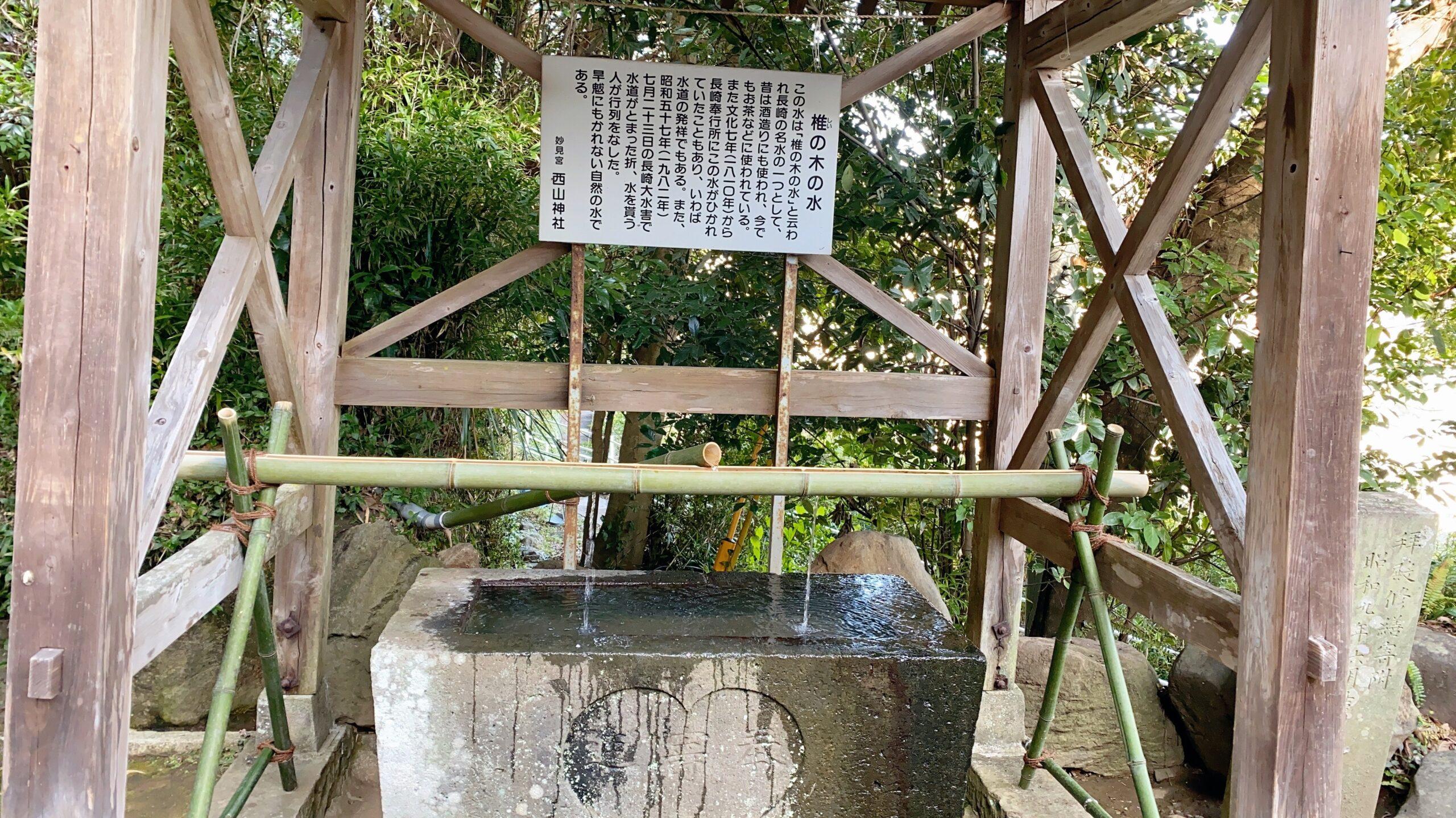 西山神社の椎の木の水